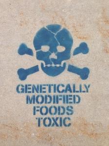GMOimage